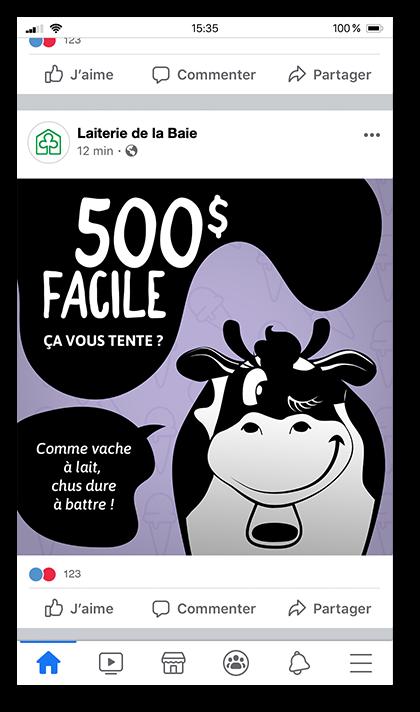 Facebook de la Laiterie de la Baie